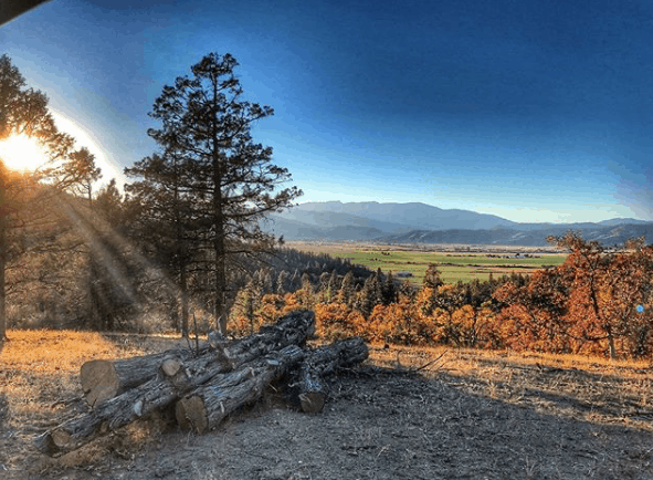 five marys farm california